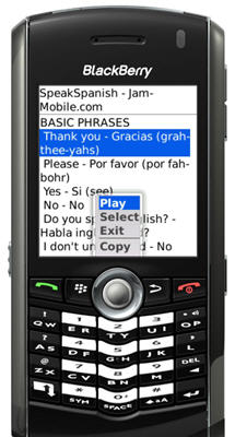 Speak Spanish Audio Language Phrasebook Translator for BlackBerry