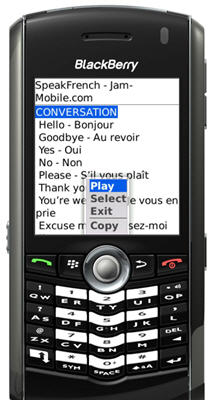 Speak French Audio Language Phrase Book Translator for Blackberry